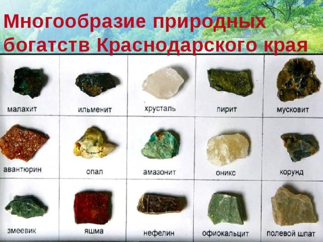 ррр Многообразие природных богатств Краснодарского края
