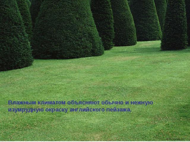 Влажным климатом объясняют обычно и нежную изумрудную окраску английского пейзажа.