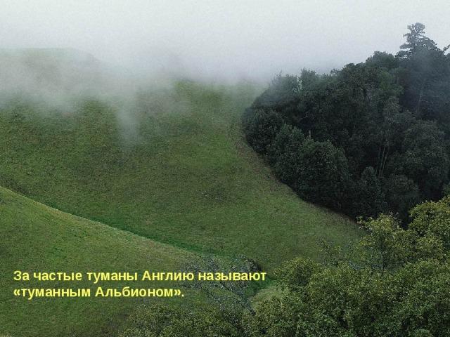 За частые туманы Англию называют «туманным Альбионом».