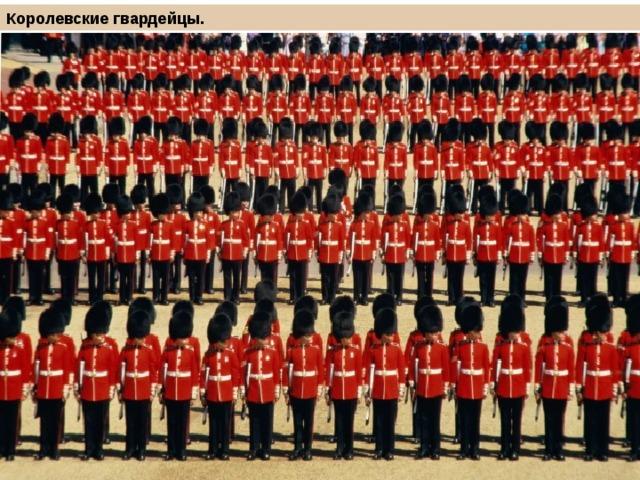Королевские гвардейцы.