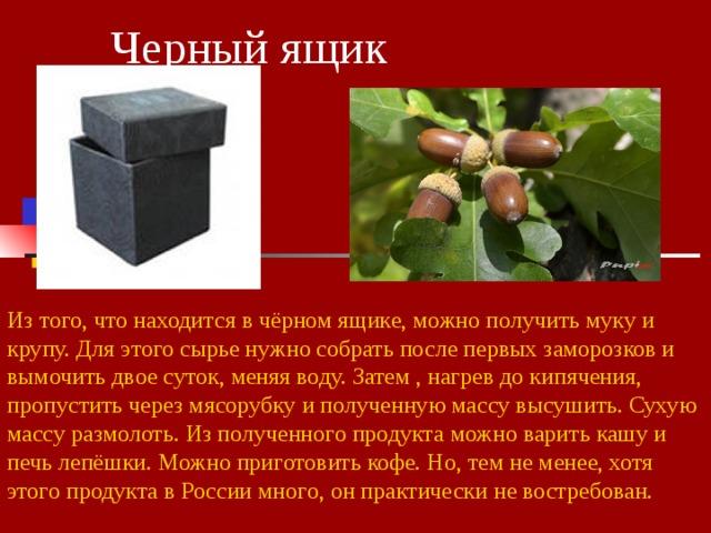 Черный ящик Из того, что находится в чёрном ящике, можно получить муку и крупу. Для этого сырье нужно собрать после первых заморозков и вымочить двое суток, меняя воду. Затем , нагрев до кипячения, пропустить через мясорубку и полученную массу высушить. Сухую массу размолоть. Из полученного продукта можно варить кашу и печь лепёшки. Можно приготовить кофе. Но, тем не менее, хотя этого продукта в России много, он практически не востребован.