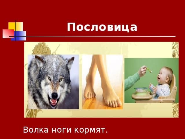 Пословица Волка ноги кормят.