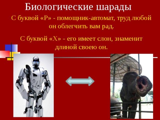 Биологические шарады С буквой «Р» - помощник-автомат, труд любой он облегчить вам рад. С буквой «Х» - его имеет слон, знаменит длиной своею он.