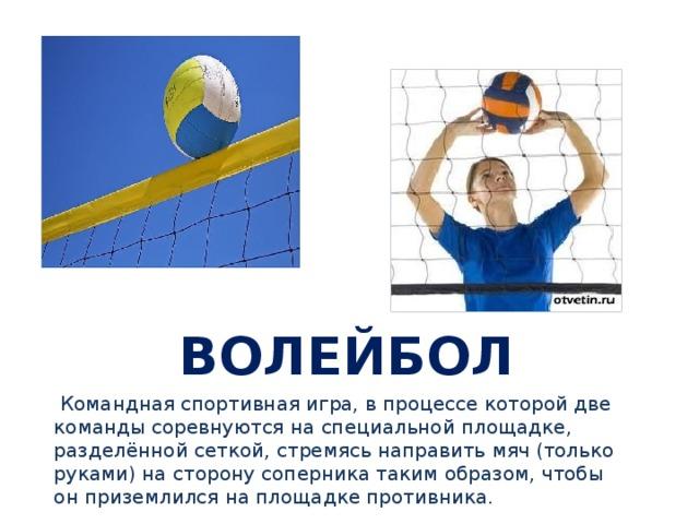 спортивные игры через сетку