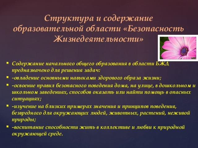 Структура и содержание образовательной области «Безопасность Жизнедеятельности»