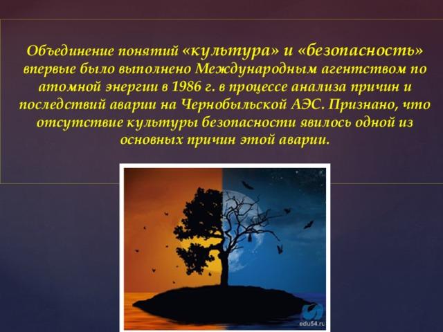 Объединение понятий «культура» и «безопасность» впервые было выполнено Международным агентством по атомной энергии в 1986 г. в процессе анализа причин и последствий аварии на Чернобыльской АЭС. Признано, что отсутствие культуры безопасности явилось одной из основных причин этой аварии.