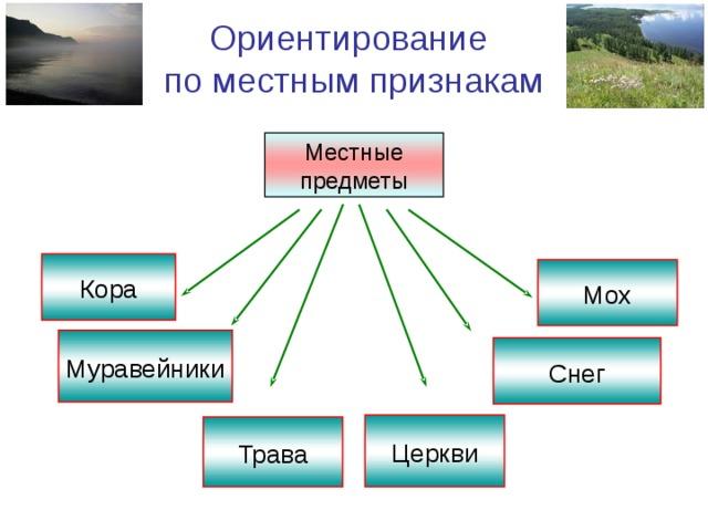 Ориентирование по местным признакам Местные предметы Кора Мох Муравейники Снег Церкви Трава