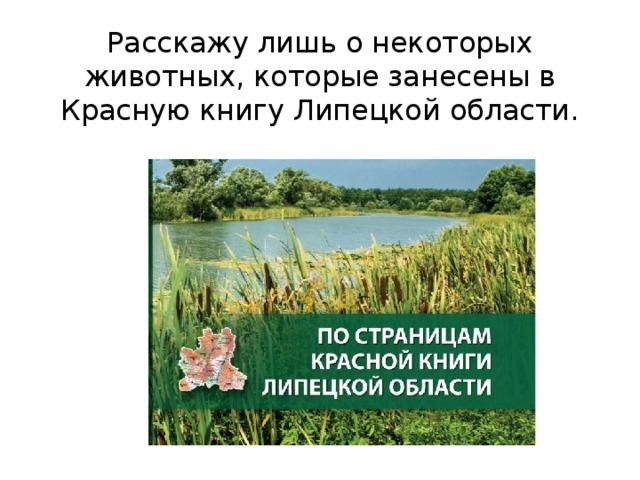 Расскажу лишь о некоторых животных, которые занесены в Красную книгу Липецкой области.
