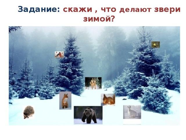 Задание: скажи , что делают звери зимой?
