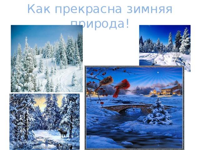 Как прекрасна зимняя природа!