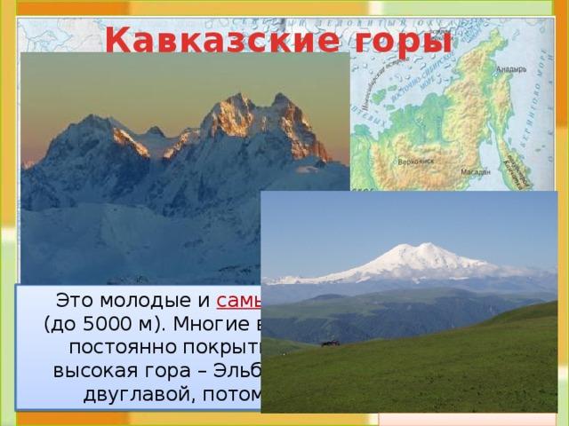 Кавказские горы  Это молодые и самые высокие горы России (до 5000 м). Многие вершины и склоны этих гор постоянно покрыты льдом и снегом. Самая высокая гора – Эльбрус (5642 м). Её называют двуглавой, потому что у неё 2 вершины.