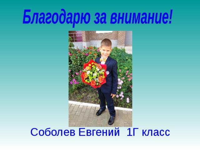 Соболев Евгений 1Г класс