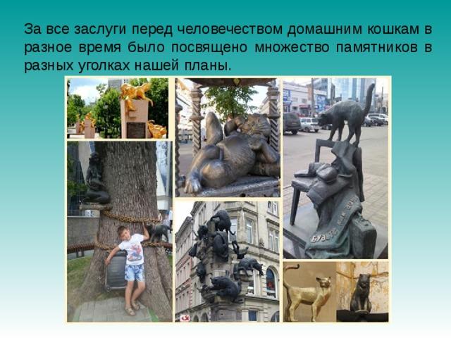 За все заслуги перед человечеством домашним кошкам в разное время было посвящено множество памятников в разных уголках нашей планы.