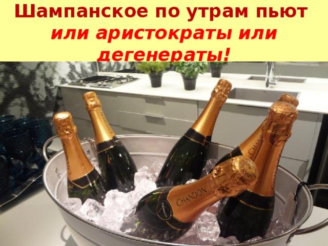 Шампанское по утрам пьют  или аристократы или дегенераты!