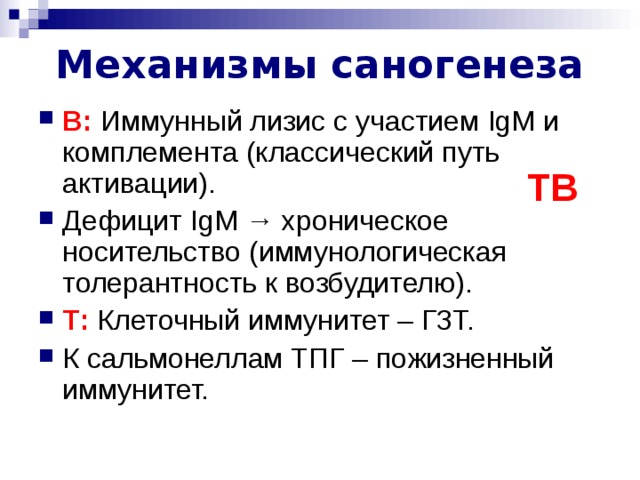 Механизмы саногенеза B : Иммунный лизис с участием IgM и комплемента (классический путь активации). Дефицит IgM  → хроническое носительство (иммунологическая толерантность к возбудителю). T : Клеточный иммунитет – ГЗТ. К сальмонеллам ТПГ – пожизненный иммунитет. TB Лектиновый и альтернативный пути активации комплемента. ЛПС сальмонелл ТПГ – тимус-независимый АГ →  IgM .