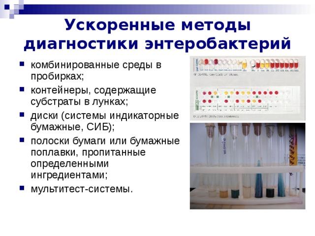 Ускоренные методы диагностики энтеробактерий