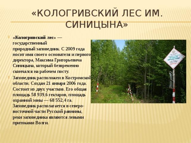 «Кологривский лес им. Синицына»