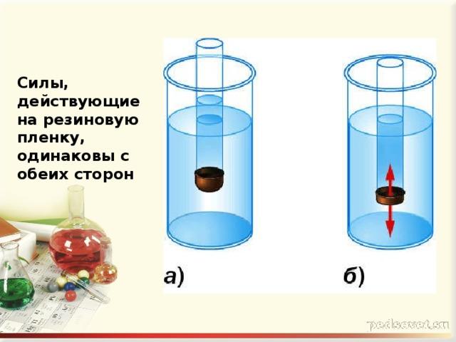 Силы, действующие на резиновую пленку, одинаковы с обеих сторон