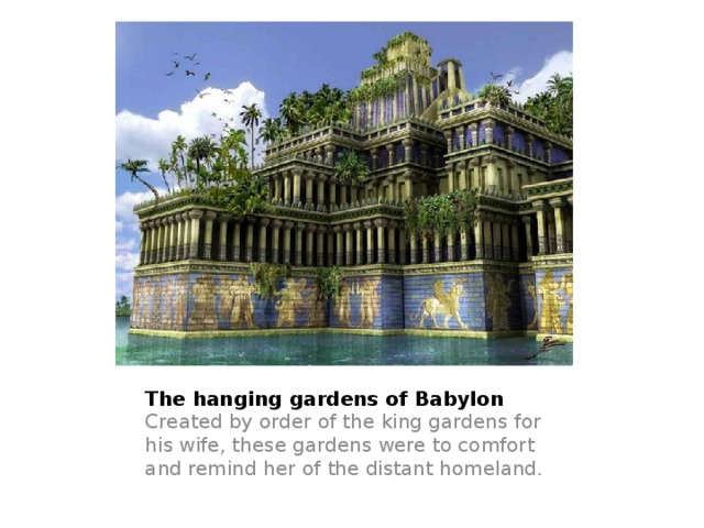 The hanging gardens of Babylon Created by order of the king gardens for his wife, these gardens were to comfort and remind her of the distant homeland.