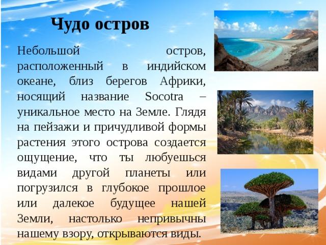 Чудо остров Небольшой остров, расположенный в индийском океане, близ берегов Африки, носящий название Socotra – уникальное место на Земле. Глядя на пейзажи и причудливой формы растения этого острова создается ощущение, что ты любуешься видами другой планеты или погрузился в глубокое прошлое или далекое будущее нашей Земли, настолько непривычны нашему взору, открываются виды.