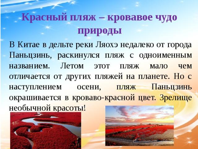 Красный пляж – кровавое чудо природы В Китае в дельте реки Ляохэ недалеко от города Паньцзинь, раскинулся пляж с одноименным названием. Летом этот пляж мало чем отличается от других пляжей на планете. Но с наступлением осени, пляж Паньцзинь окрашивается в кроваво-красной цвет. Зрелище необычной красоты!