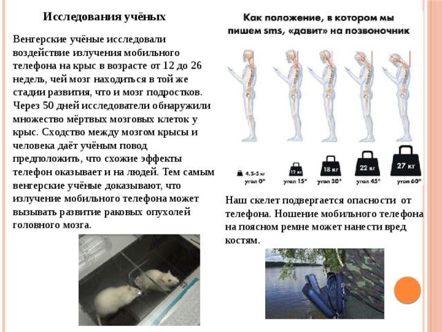 Исследования учёных Венгерские учёные исследовали воздействие излучения мобильного телефона на крыс в возрасте от 12 до 26 недель, чей мозг находиться в той же стадии развития, что и мозг подростков. Через 50 дней исследователи обнаружили множество мёртвых мозговых клеток у крыс. Сходство между мозгом крысы и человека даёт учёным повод предположить, что схожие эффекты телефон оказывает и на людей. Тем самым венгерские учёные доказывают, что излучение мобильного телефона может вызывать развитие раковых опухолей головного мозга. Наш скелет подвергается опасности от телефона. Ношение мобильного телефона на поясном ремне может нанести вред костям.