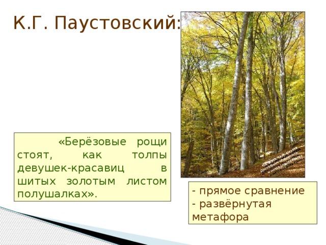 К.Г. Паустовский:  «Берёзовые рощи стоят, как толпы девушек-красавиц в шитых золотым листом полушалках». - прямое сравнение  - развёрнутая метафора