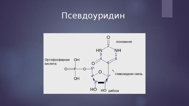 Псевдоуридин
