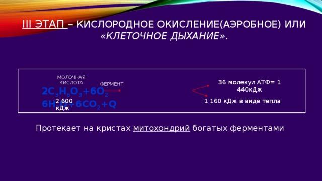 III этап – кислородное окисление(аэробное) или «клеточное дыхание».   МОЛОЧНАЯ КИСЛОТА 36 молекул АТФ= 1 440кДж ФЕРМЕНТ 2C 3 H 6 O 3 +6O 2 6H 2 O+6CO 2 +Q 2 600 кДж 1 160 кДж в виде тепла Протекает на кристах митохондрий богатых ферментами