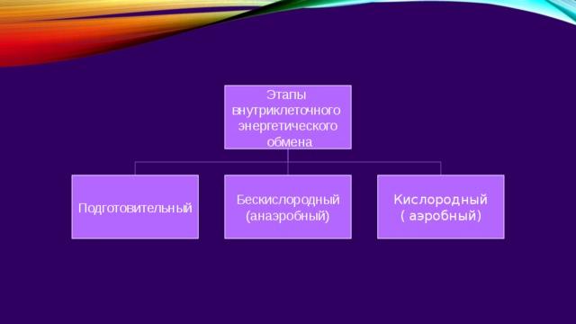 Этапы внутриклеточного энергетического  обмена Подготовительный Бескислородный Кислородный (анаэробный) ( аэробный)
