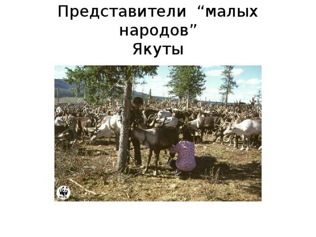 """Представители """" малых народов """"  Якуты"""
