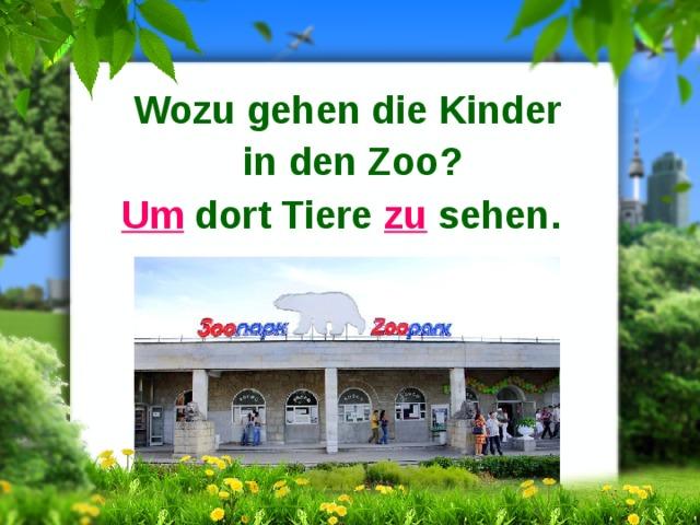 Wozu gehen die Kinder in den Zoo? Um dort Tiere zu sehen.