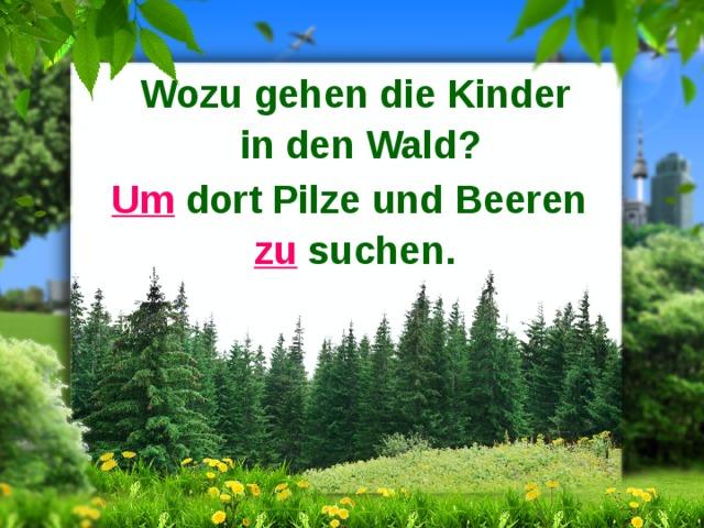 Wozu gehen die Kinder in den Wald? Um dort Pilze und Beeren zu suchen.