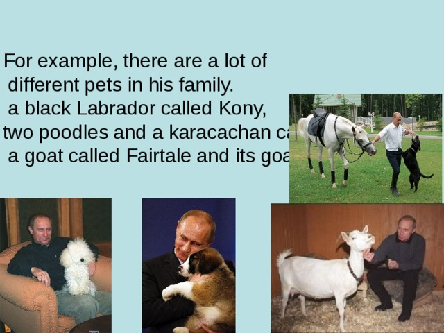 For example, there are a lot of  different pets in his family.  a black Labrador called Kony,  two poodles and a karacachan called Buffy,  a goat called Fairtale and its goatling.