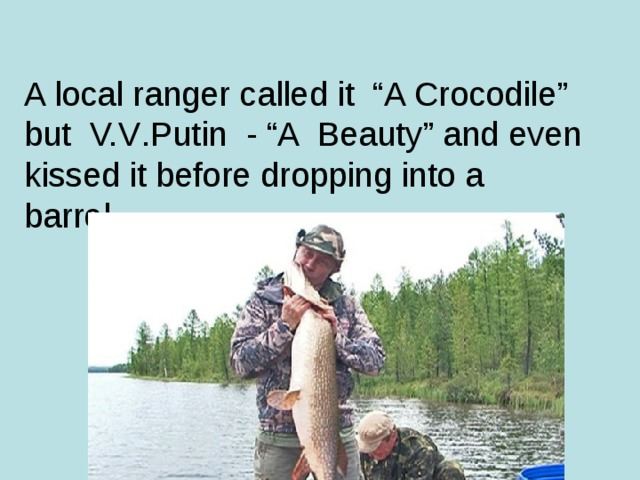 "A local ranger called it ""A Crocodile"" but V.V . Putin - ""A Beauty"" and even kissed it before dropping into a barrel."