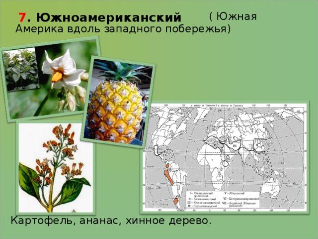 7 . Южноамериканский  ( Южная Америка вдоль западного побережья) Картофель, ананас, хинное дерево.