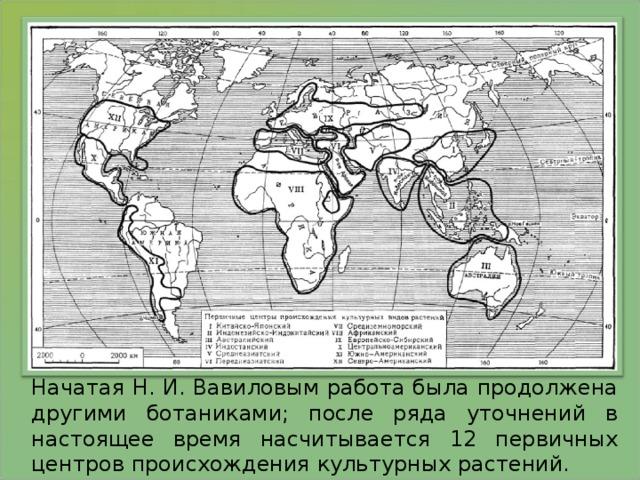Начатая Н. И. Вавиловым работа была продолжена другими ботаниками; после ряда уточнений в настоящее время насчитывается 12 первичных центров происхождения культурных растений.