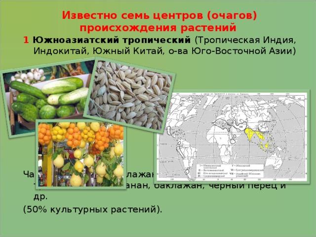 Известно семь центров (очагов) происхождения растений 1 Южноазиатский тропический (Тропическая Индия, Индокитай, Южный Китай, о-ва Юго-Восточной Азии) Чай, рис, огурец, баклажан, цитрусовые, сахарный тростник, манго, банан, баклажан, черный перец и др. (50% культурных растений).