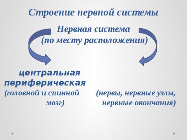Строение нервной системы Нервная система (по месту расположения)  центральная периферическая (головной и спинной (нервы, нервные узлы,  мозг) нервные окончания)