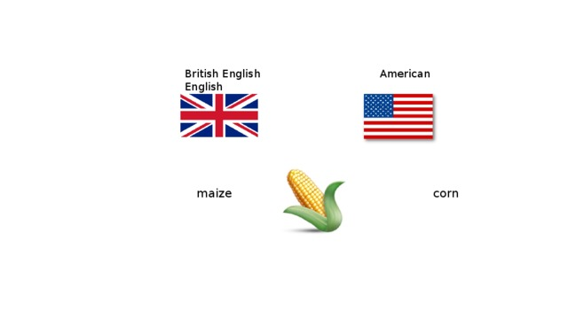 British English  American English  maize   corn