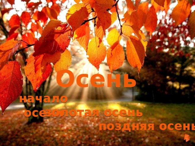 Осень начало осени золотая осень поздняя осень
