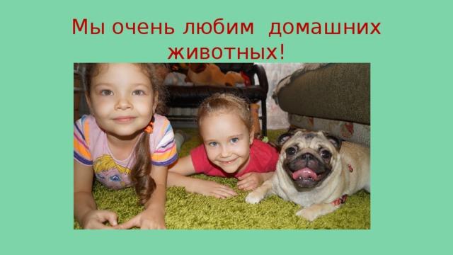 Мы очень любим домашних животных!