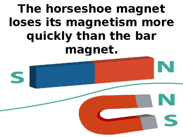 The horseshoe magnet loses its magnetism more quickly than the bar magnet.