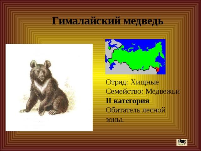 Гималайский медведь Отряд: Хищные  Семейство: Медвежьи  II категория  Обитатель лесной зоны.