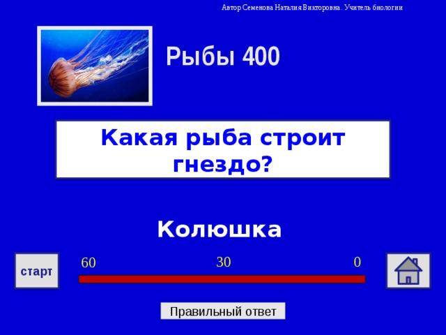 Автор Семенова Наталия Викторовна. Учитель биологии Рыбы 400 Какая рыба строит гнездо? Колюшка 0 30 60 старт Правильный ответ