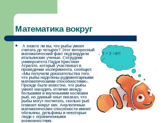 Математика вокруг  А знаете ли вы, что рыбы умеют считать до четырех? Этот интересный математический факт подтвердили итальянские ученые. Сотрудник университета Падуи Кристиан Агрилло, который участвовал в проведении эксперимента, сообщил: «Мы получили доказательства того, что рыбы наделены рудиментарными математическими способностями». Прежде было известно, что рыбы умеют находить отличие между большими и маленькими косяками рыб, но данный опыт показал, что рыбы могут посчитать, сколько рыб плавает вокруг них. Аналогичные математические способности имеют обезьяны, дельфины и некоторые люди с ограниченными возможностями.  2 + 2 =4!!!