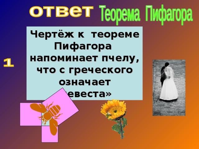 Чертёж к теореме Пифагора напоминает пчелу, что с греческого означает «невеста»