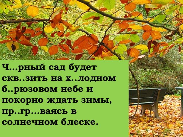 Ч…рный сад будет скв..зить на х..лодном б..рюзовом небе и покорно ждать зимы, пр..гр…ваясь в солнечном блеске.