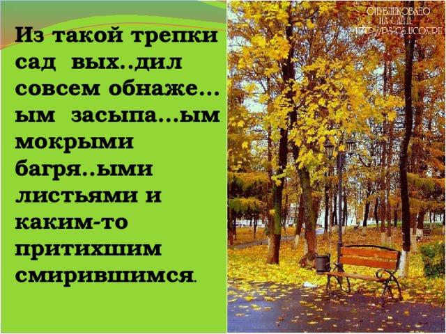 Из такой трепки сад вых..дил совсем обнаже…ым засыпа…ым мокрыми багря..ыми листьями и каким-то притихшим смирившимся .