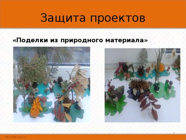 Защита проектов «Поделки из природного материала»